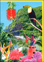 Blank Card General Fantasy Hula Girl