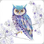 Pizazz Limited Edition Owl