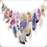 Pizazz Limited Edition Feathers