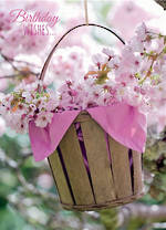 Birthday Wishes Pink Blossoms