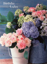 Birthday Wishes Hydrangeas