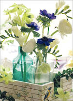 Blank Card Floral Beautiful Blanks Flower Vases
