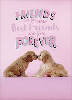 Special Friend Birthday Card Hi There Puppies