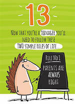 Birthday Age Card 13 Male Teenager Rules