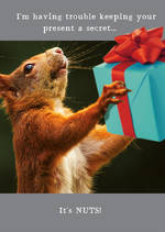 Animal Antics Squirrel With Gift