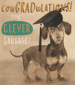 Graduation Card Funny Works