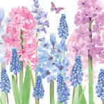 Lunch Napkins Paper Products Hyacinth Garden