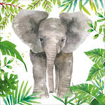 Lunch Napkins Paper Products Tropical Elephant