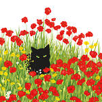 Lunch Napkins Paper Products Black Cat Poppies