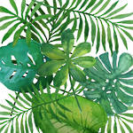 Lunch Napkins Paper Products Tropical Leaves