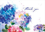 Thank You Note Cards Hydrangeas