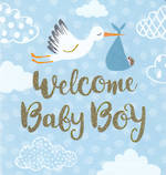 Mini Card Stork Baby Boy