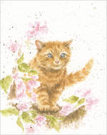 Mini Card Wrendale Cat