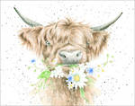 Mini Card Wrendale Daisy Coo