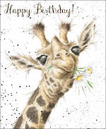 Fur Feathers Birthday Giraffe