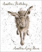 Fur Feathers Birthday Grey Hare
