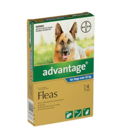 Advantage Spot-on Flea Treatment for Large Dogs +25kg (Blue / 4 pippets)