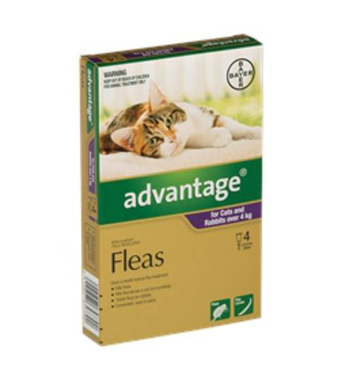 Advantage Spot-on Flea Treatment for Cats and Rabbits Over 4kg (Purple / 4 pippets)