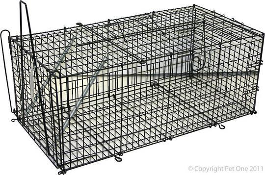 Pet One Possum/Cat Trap