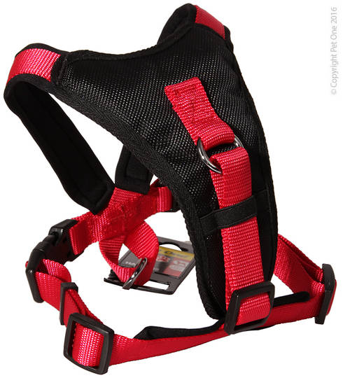 Pet One Harness - Comfy 54 - 66cm Padded 20mm Black/Red