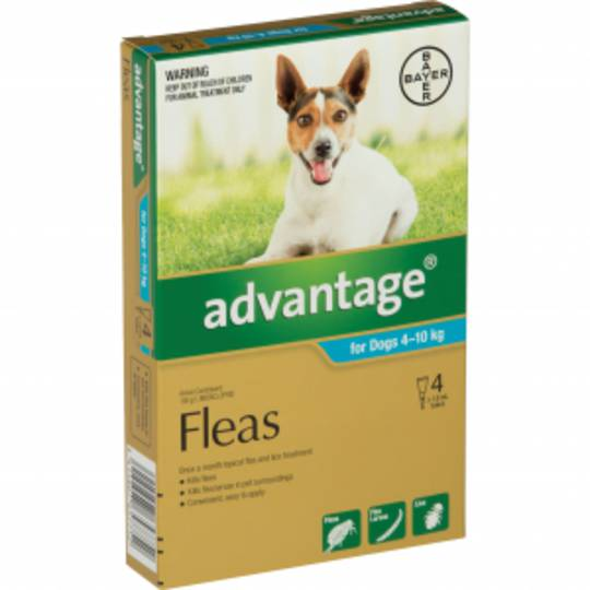 Advantage Spot-on Flea Treatment for Medium Dogs  4-10kg (Turquoise / 4 pippets)