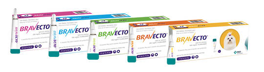 Bravecto Spot-On for Dogs 20Kg up to 40Kg
