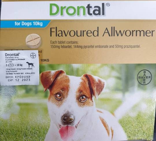 Drontal AllWormer for Dogs 5-10kg / 1 Tablet