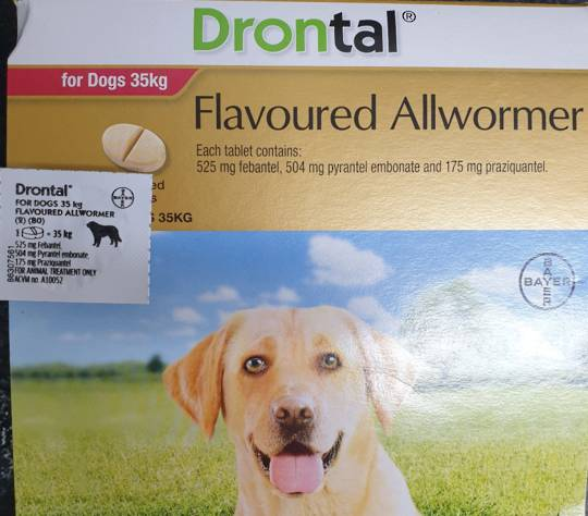 Drontal AllWormer for Dogs 20-35kg / 1 Tablet