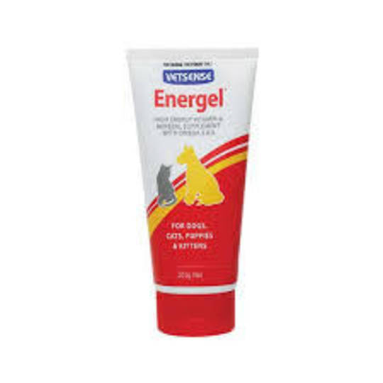 Energel Vetsense 200g is a highly palatable source of energy for Dogs, Cats, Puppies & Kittens