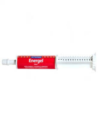 Energel Vetsense 60ml is a highly palatable source of energy for Dogs, Cats, Puppies & Kittens