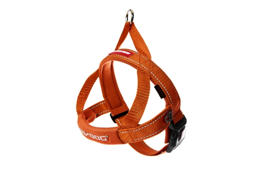 Ezydog Quick Fit Harness / Orange / S