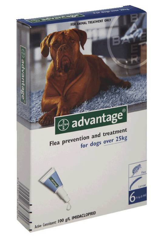 Advantage Spot-on Flea Treatment for Large Dogs (Blue / 4 pippets)