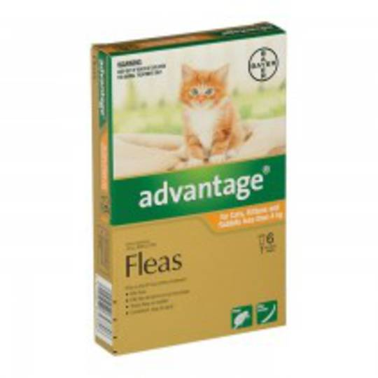 Advantage Spot-on Flea Treatment for Cats, Kittens and Rabbits up to 4kg (Orange / 6 pippets)