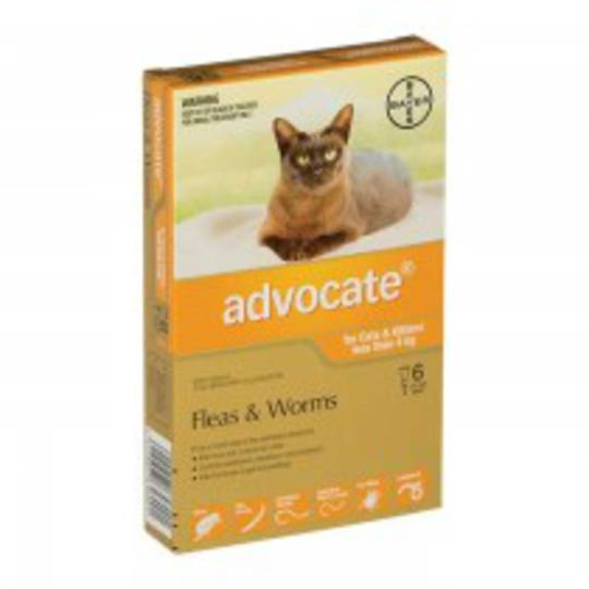 Advocate Spot-on Flea and Worm Treatment for Cats and Kittens up to 4kg (Orange / 6 pippets)