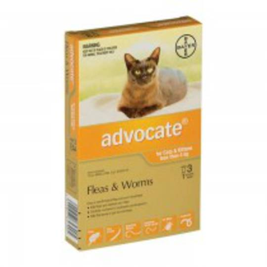 Advantage Spot-on Flea and Worm Treatment for Cats and Kittens up to 4kg (Orange / 3 pippets)