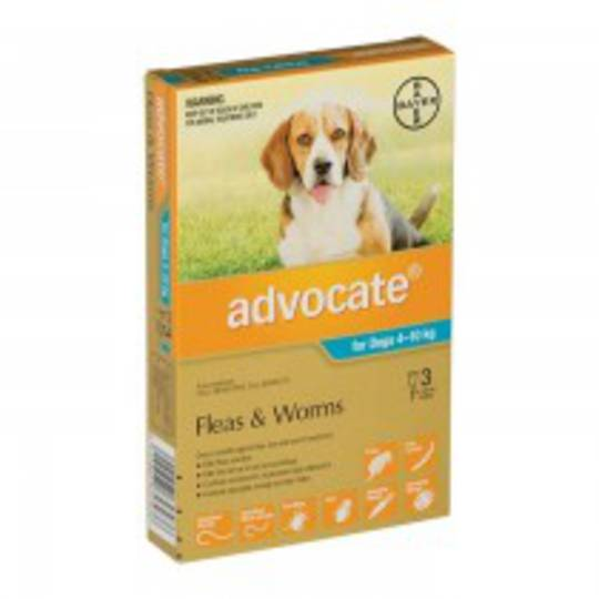 Advocate Spot-on Flea and Worm Treatment for Medium Dogs 4-10kg (Turquoise / 3 pippets)