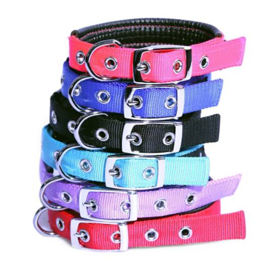 Pet One Collar - Comfort Nylon Padded Adjustable 25mm 47-57cm Blue
