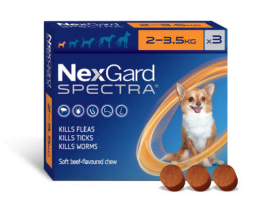 NexGard Chewable Flea & Worm Treatment for Very Small Dogs 2-3.5kg (Orange / 3 chewable)