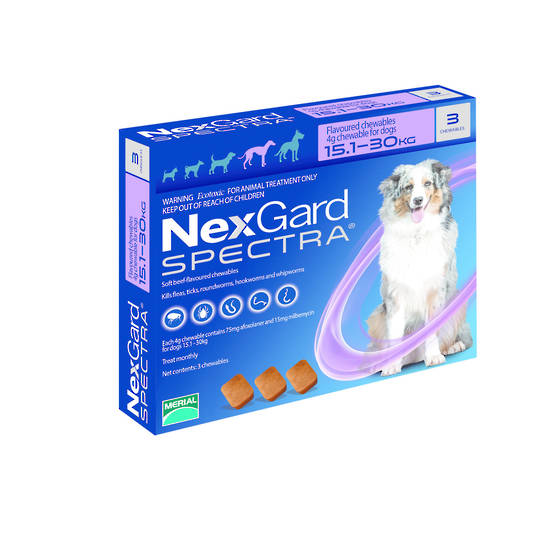 NexGard Chewable Flea & Worm Treatment for Large Dogs (Purple / 3 chewable)