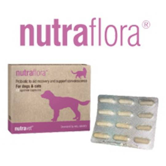 Nutraflora for Cats & Dogs Probiotic - 12 caps