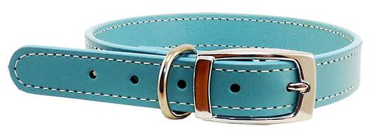 Leather Stitched Collar Aqua (32mm x 60cm)