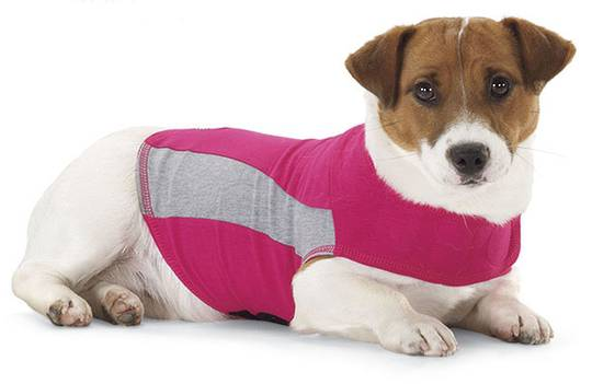 Thundershirt PINK - Polo - S