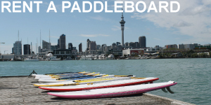rent-a-paddleboard