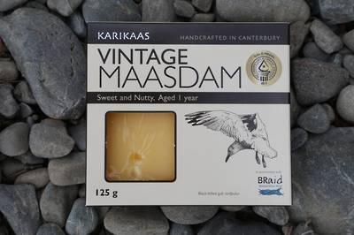 Vintage Maasdam (Black-billed gull, tarapuka)