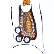 Murano Glass Pendant Valentina 3C - Bronze