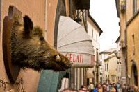 Orvieto boar's head