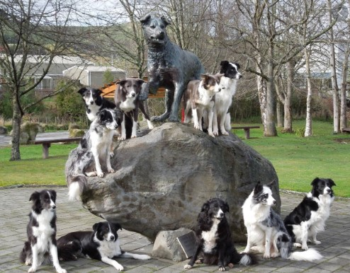 hunterville dog statue with dogs