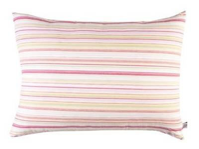 Vintage Retro Pink & Lime French Stripe with Pink Drill Backing