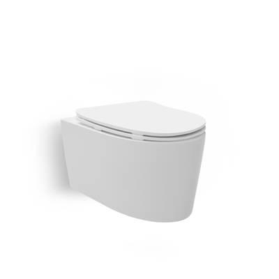 Grande Wall Hung Toilet