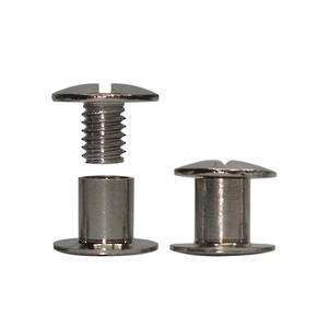 6mm long N P Dome Interscrew